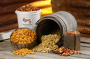 Hot & Spicy Peanuts - 3 lb Tub
